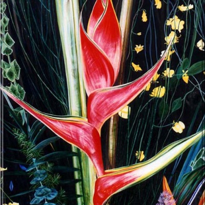 Flower Show Heliconia