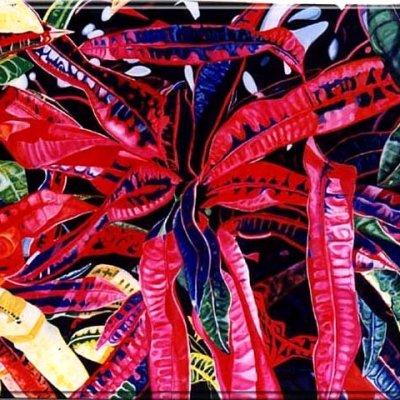 Red Croton